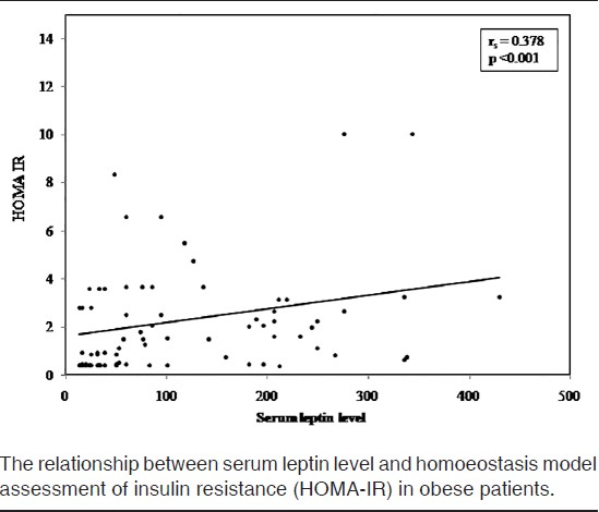 the relationship between leptin and lipids in atherosclerosis