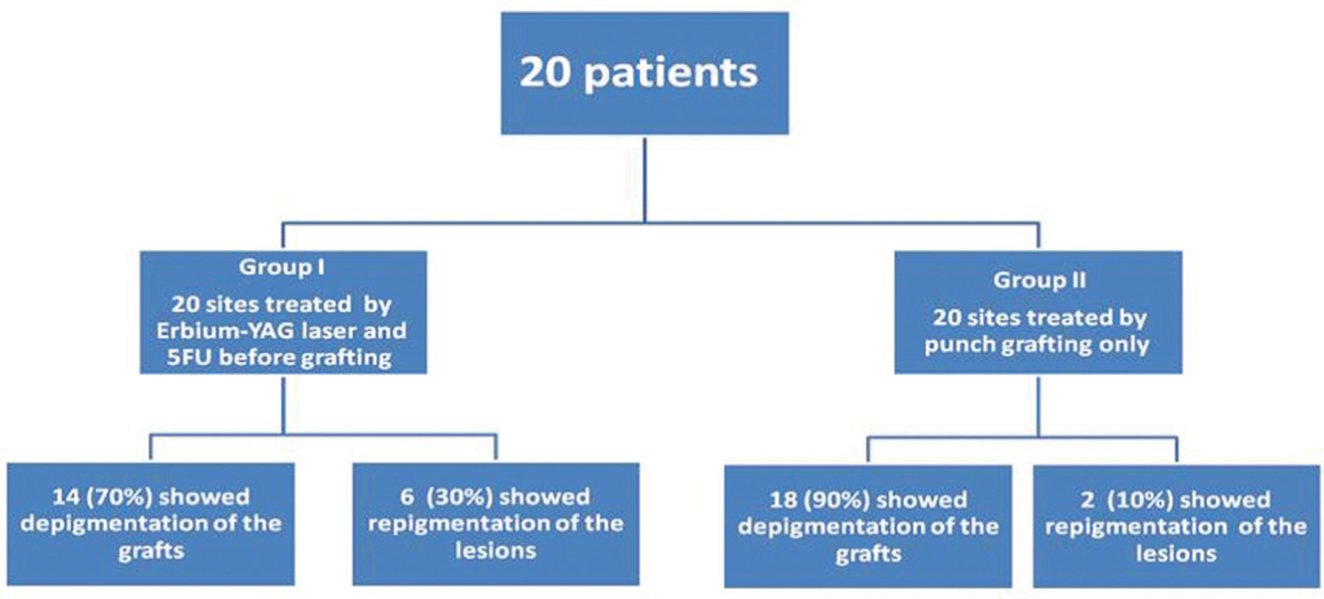 Figure 1 The Study Outline And Its Clinical Outcome